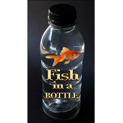 fish in a bottle (2018_03_26 17_53_47 UTC)